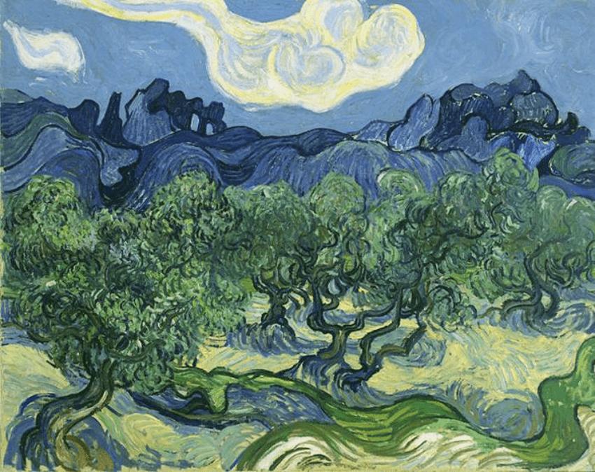 Ulivi di Van Gogh